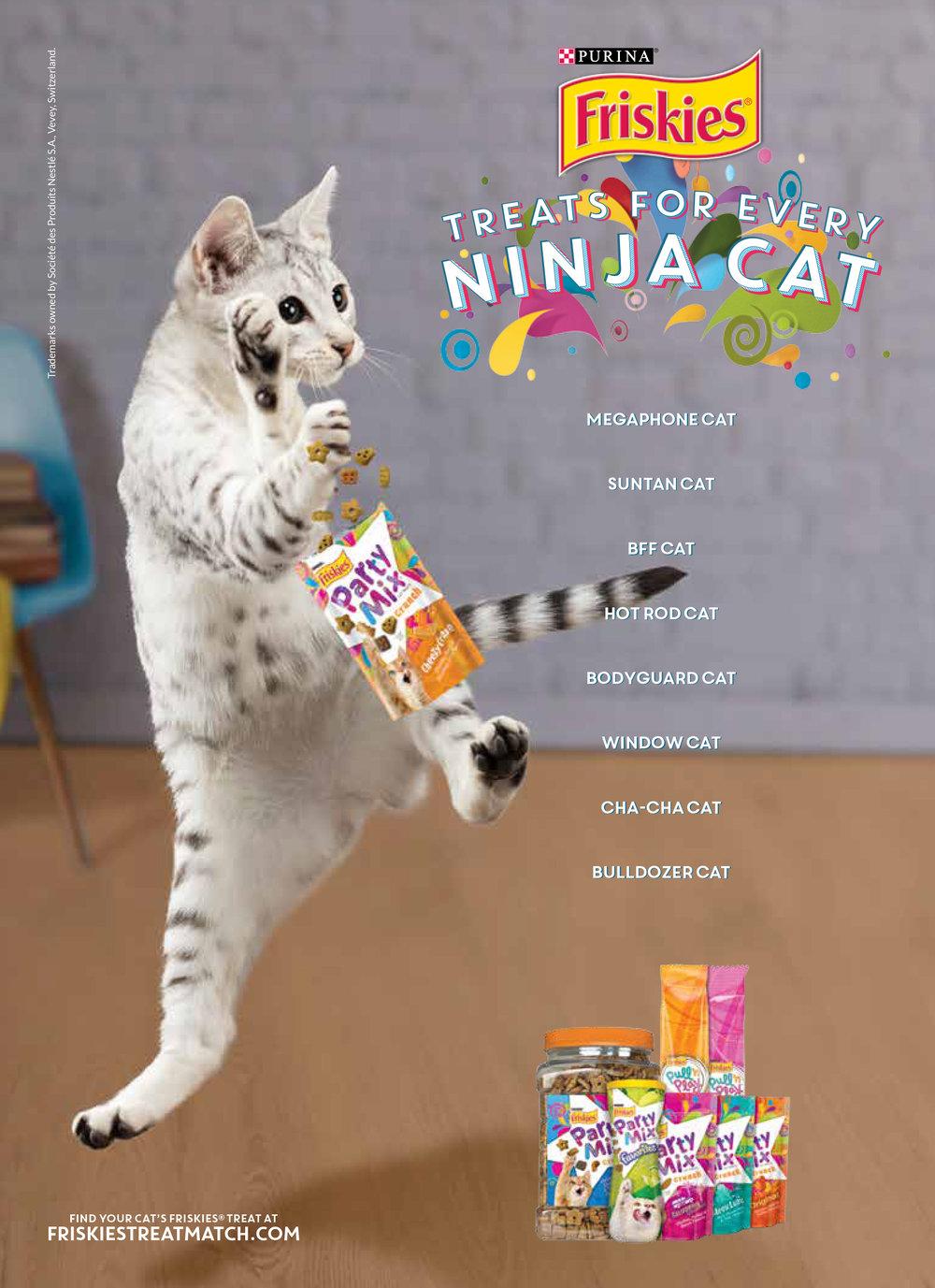 10514717-6NPFT-A Ninja_LR_Final.jpg