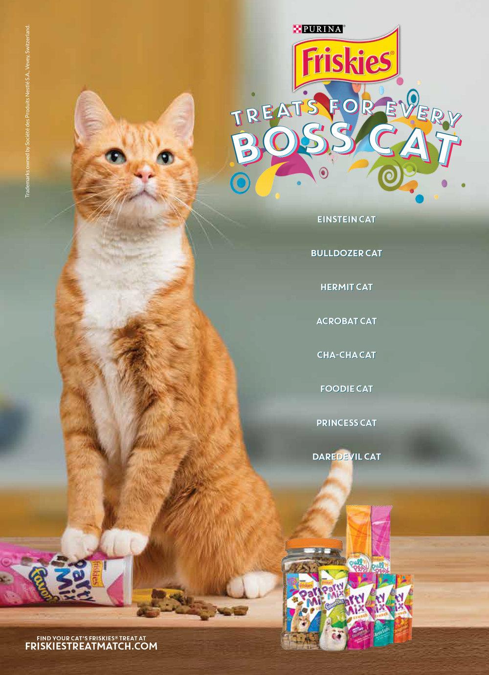 BossCat_Final.jpg