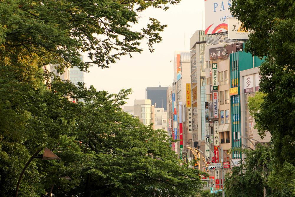 Japan EDITED-1219.jpg