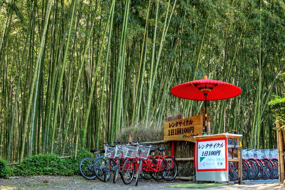Japan EDITED-1018.jpg