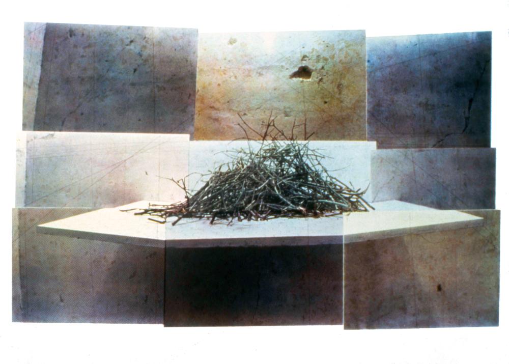 "untitled, 1989, screenprint, 30 x 40"""