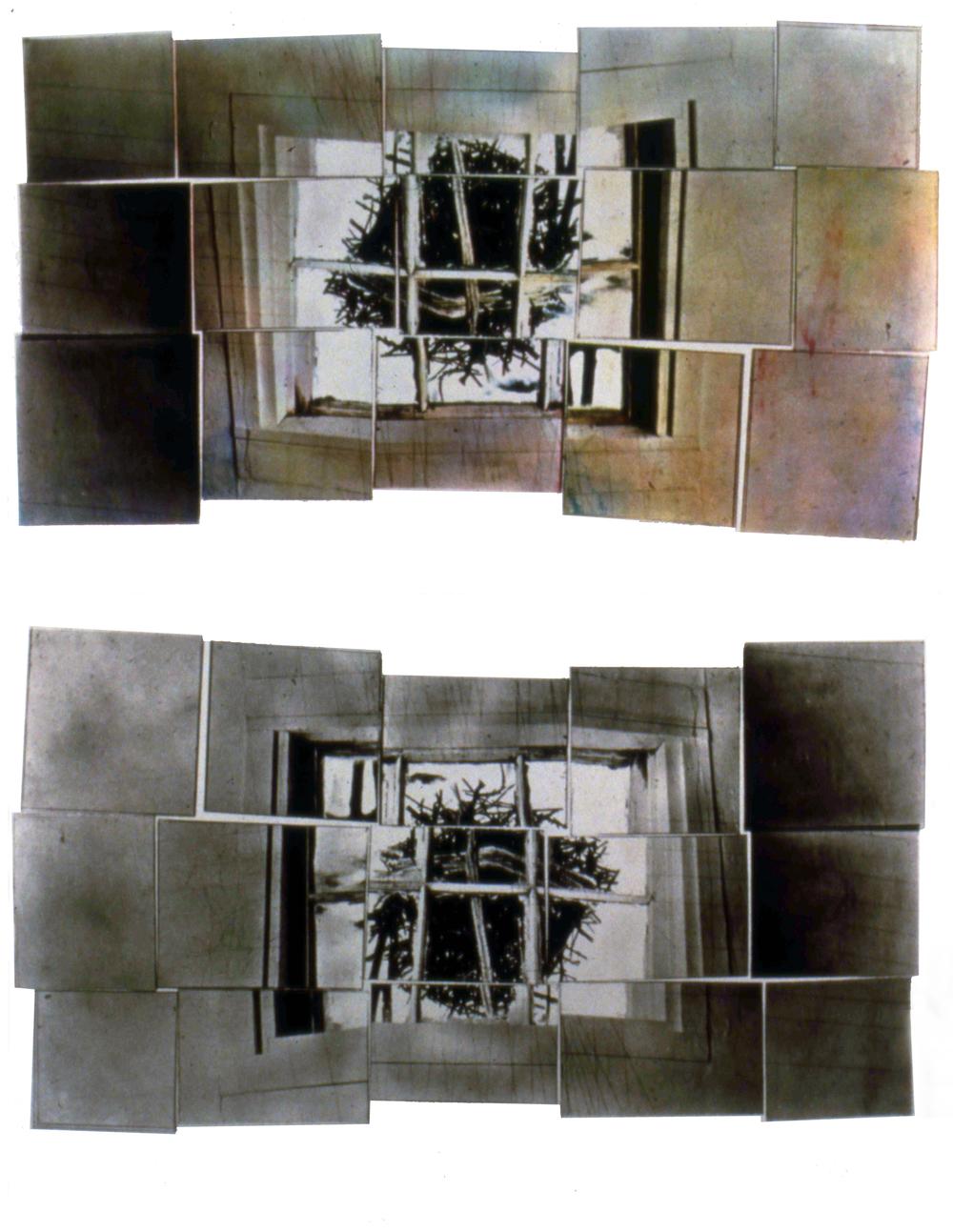 "Window Ball Twigs, 1990,screenprint, 30 x 40"""