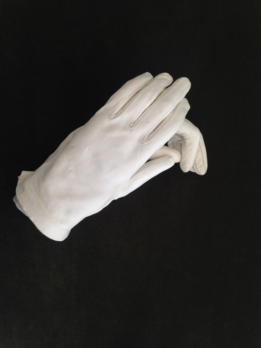AM, Ame Henderson, Fortune Teller, The Hand and the Glove.jpg