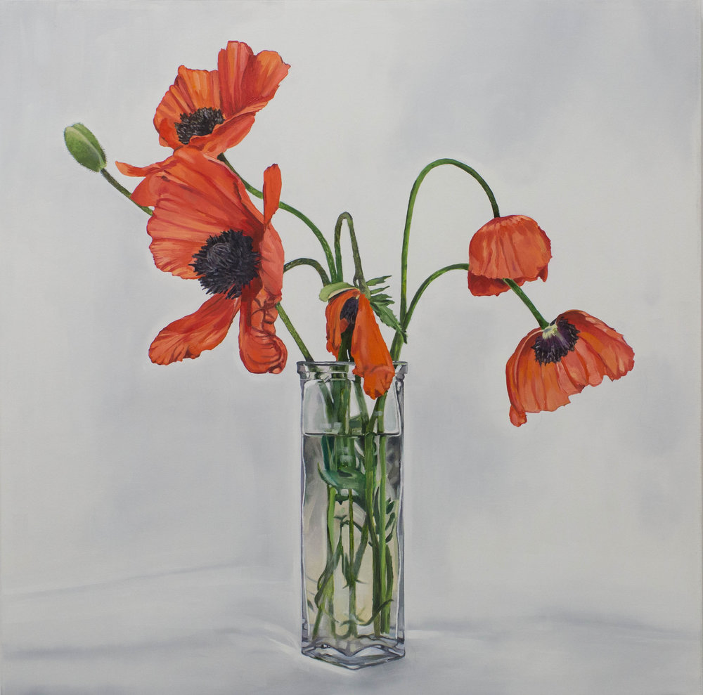 Poppies (for Jeff and Alex), 2016, oil on canvas, 44 x 44 inches