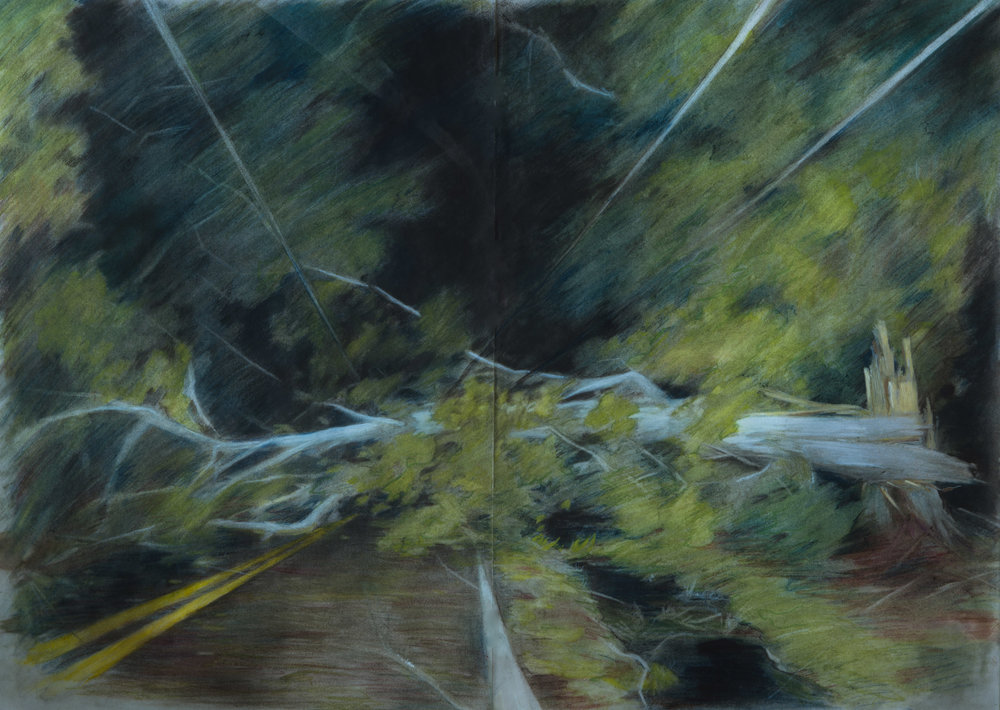 Not that road, 2017, coloured pencil, oil on vellum, 22 x 17 in.