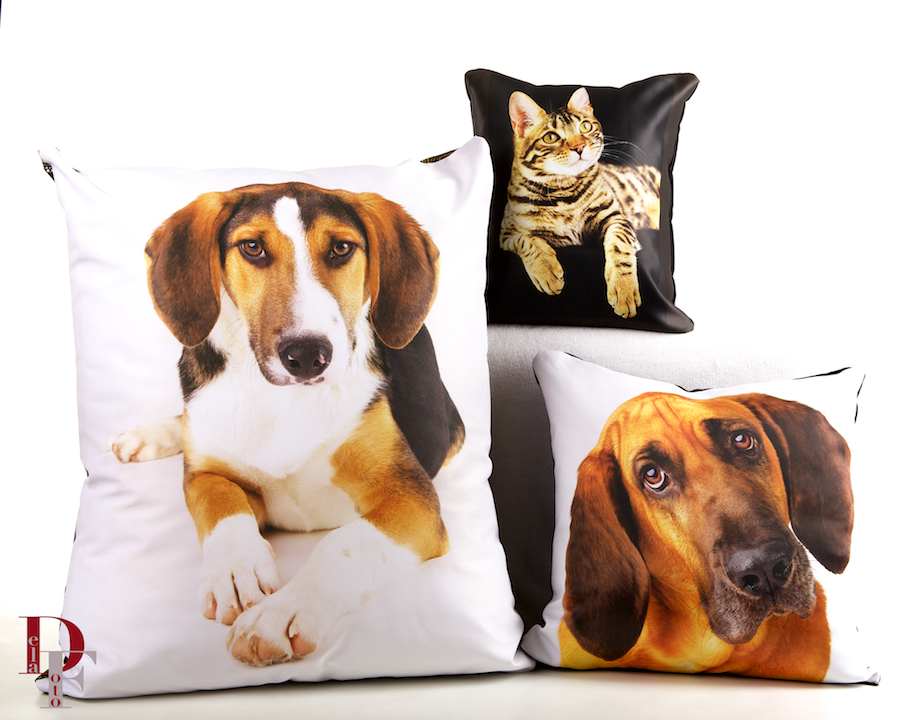 We support a variety of animal charities.  These sample pillows feature rescue animals from My Fairy Dawg Mother Hound Rescue & Community Cat Coalition of Colorado were taken by DelaFoto and are on display in their studio.