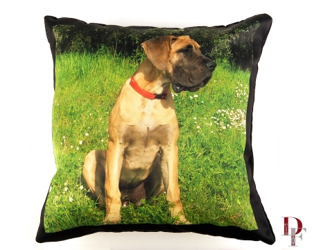 Custom photo pet pillow by www.bosleybeds.com