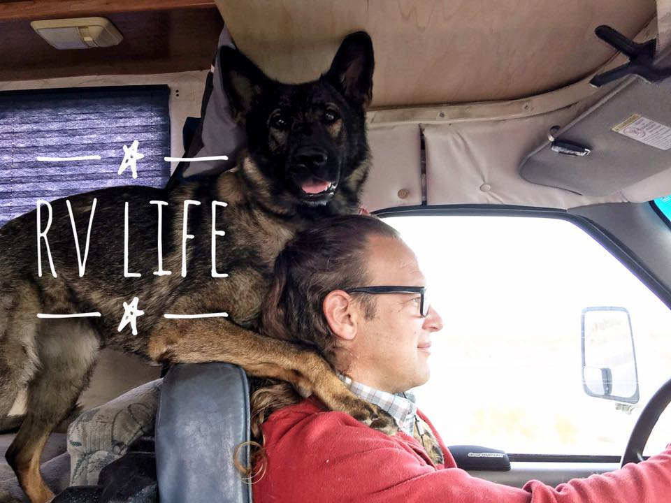 Jeff Gellman RV Dog Trainer