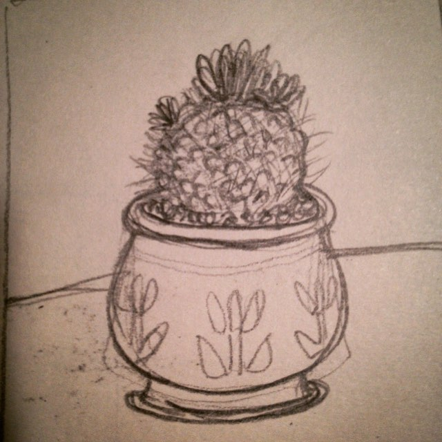 Cactus drawing!  #sketches #drawing