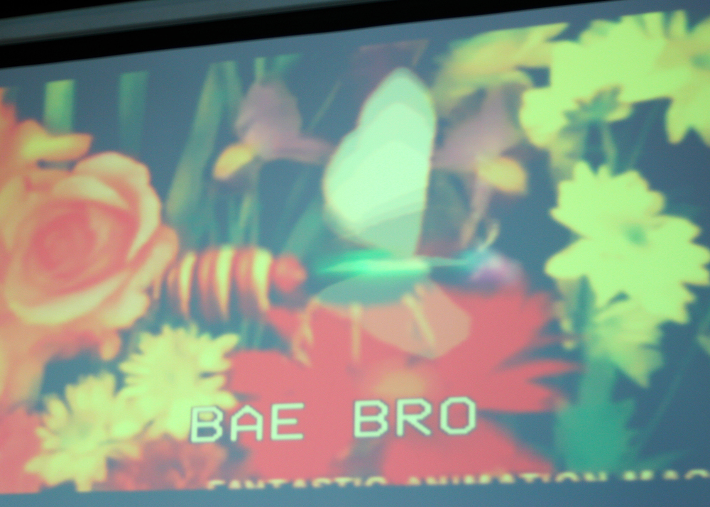 Bae Bro      // Visual Art Projections by    Sofya Levina