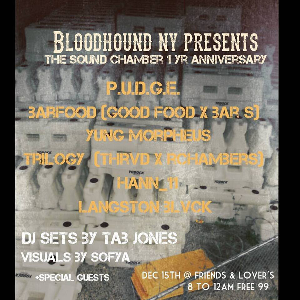 Bloodhound NY's 1st Anniversary party/ The Sound Chamber series (December Show) Image 2