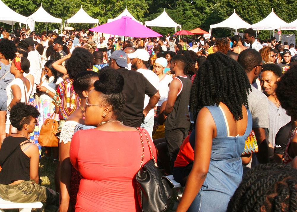 Curl Fest 2016 - Image 1