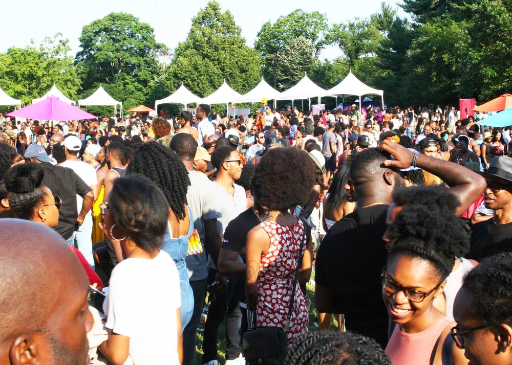 Curl Fest 2016 - Image 3