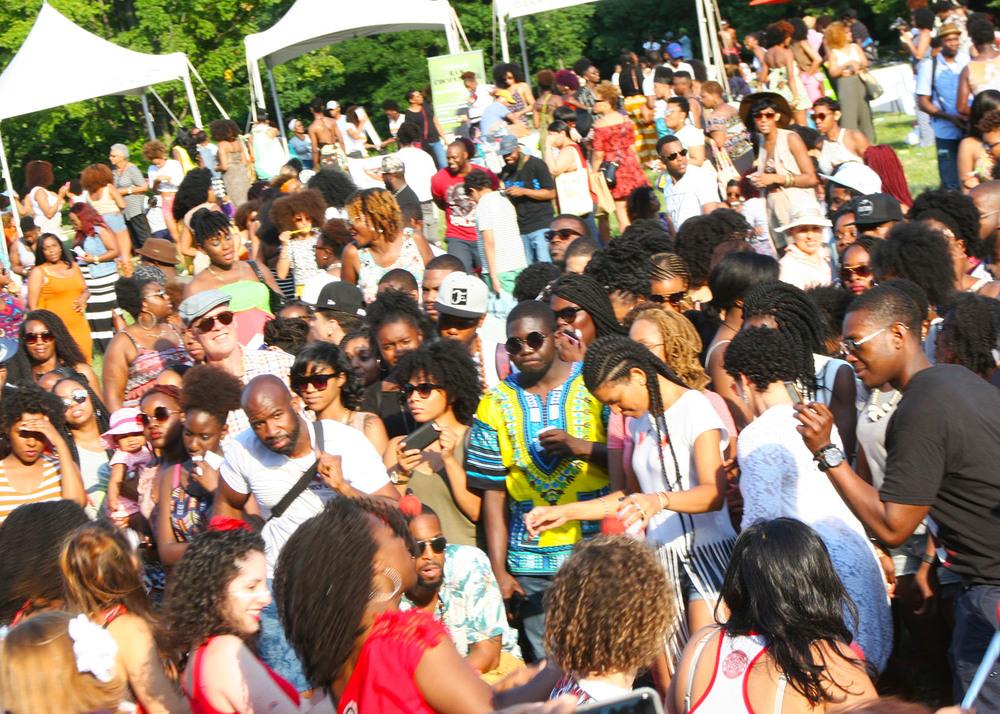 Curl Fest 2016 - Image 21