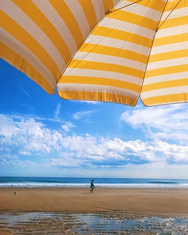 I wanted to capture how the sun ☀️ felt shining through this beautiful yellow umbrella. I hope you enjoy. . . . #umbrella #umbrellagirl #beach #ma #massachusetts #beachday #visitnewengland #visitma #mabeach #atlantic #atlanticocean #laplaya #playa #diadeplaya #dcr #massstateparks #statepark #stateparks #beachviews #undermyumbrella #salisbury #salisburybeach