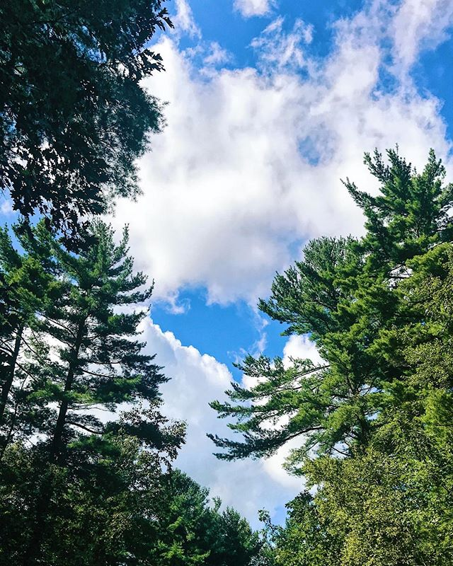 🌤 A new day brings new opportunities. Have a great one. . . . #visitnewengland #visitma #ma #cloud9 #cloudscapes #clouds #outdoors #pinetrees #fall #fall2018 #getoutside #worcestercounty #outdoorsy #massachusetts #run #running #runviews #sky #sky_brilliance