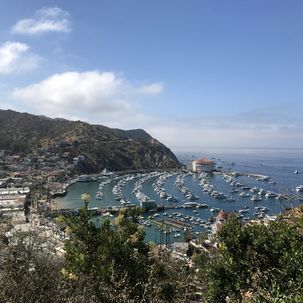 Post Card view from Catalina.  This picture was captured during our Skyline Tour