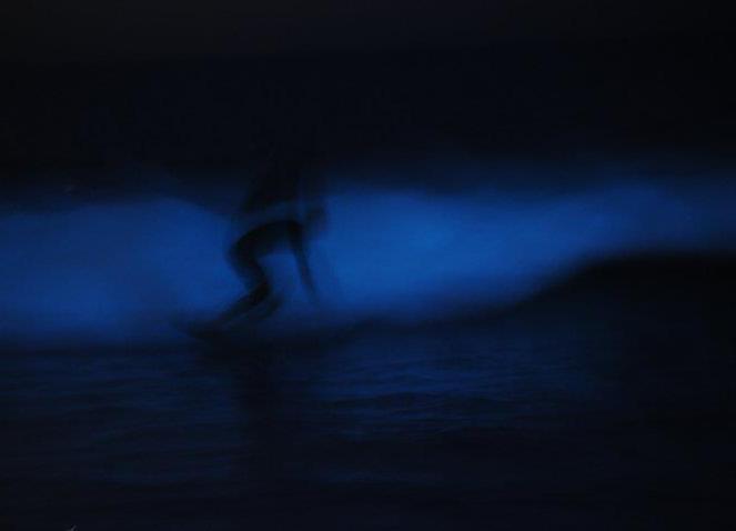 EUGENE WEISS PHOTOGRAPHY 4.jpg