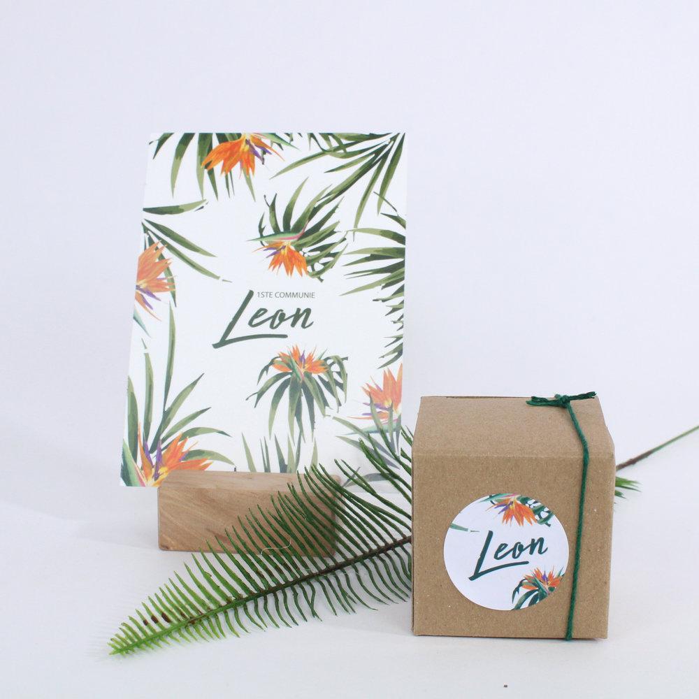 Leon 4.jpg
