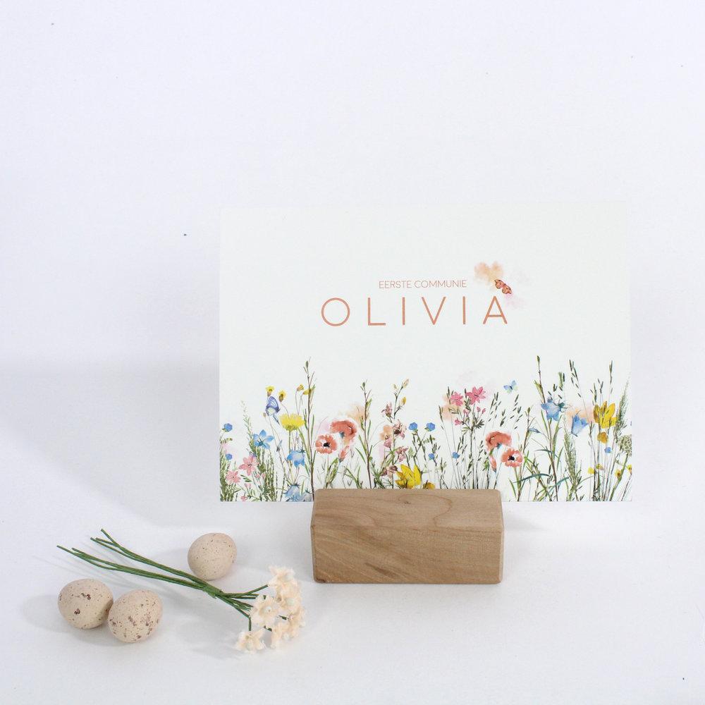 Olivia 4.jpg