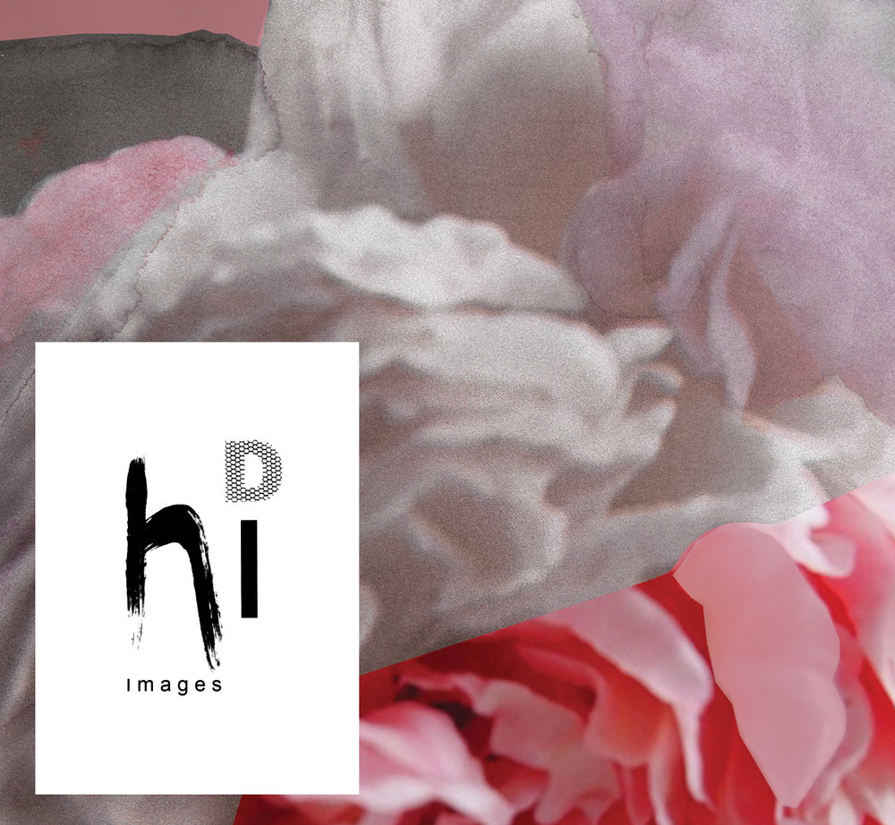 [hi D images] Creation of a brand identity for hi D images, a part of Sadigray Boutique. Plus a crop of a hi D images print is pictured above.