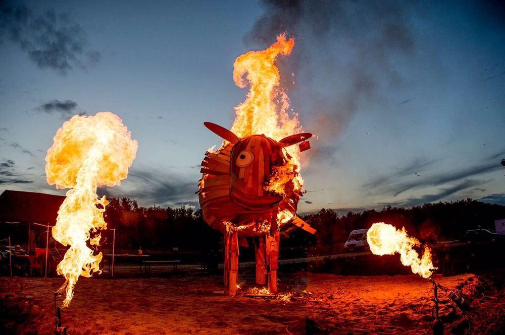 Burning Sheep (3).jpg