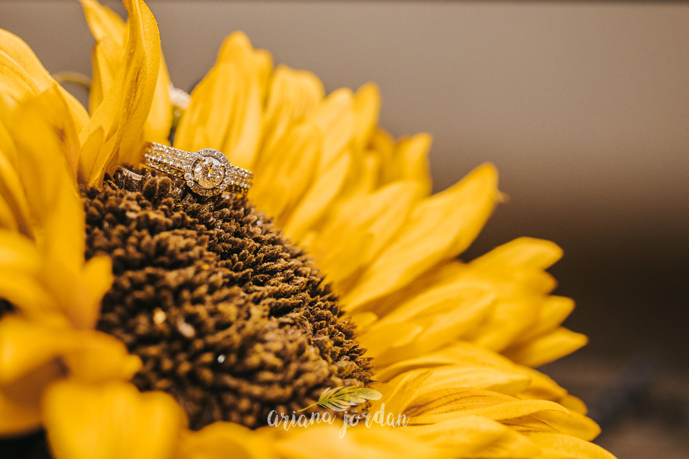 0013 Ariana Jordan Photography - Georgetown KY Wedding Photographer_.jpg