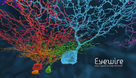 Eyewire  is a citizen science human-based computation game that aims to map neurons in the brain. It is available to the public to play online, and players reconstruct 3D images of neurons and contribute to neuroscience research as they solve 3D puzzles.