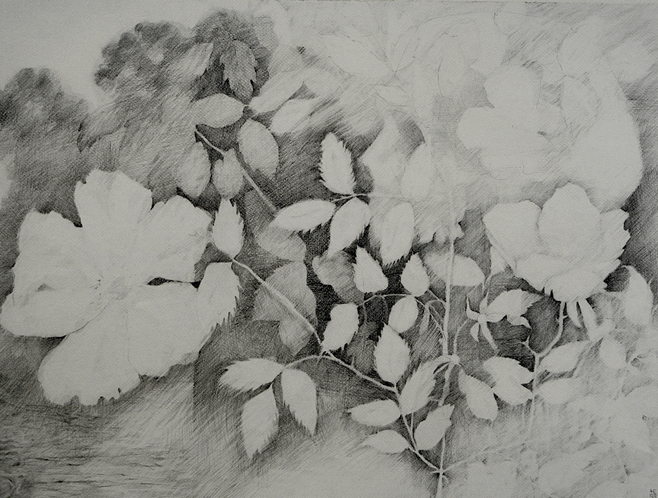 "The River   graphite on paper  18"" x 24""  2012"