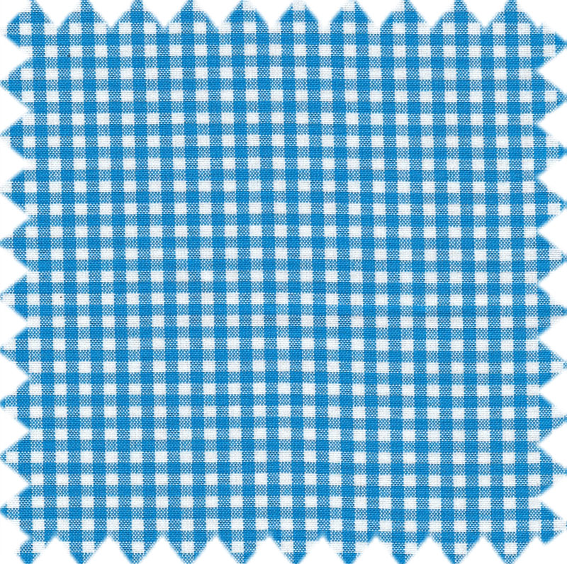Small Gingham Turquoise.jpg