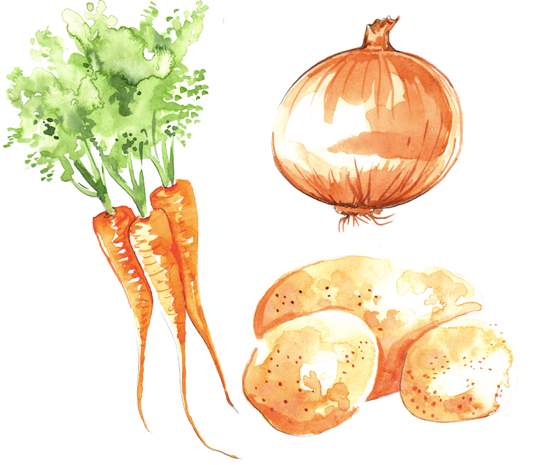Food Illustration | Watercolour | Vegetables | London based illustrator Willa Gebbie