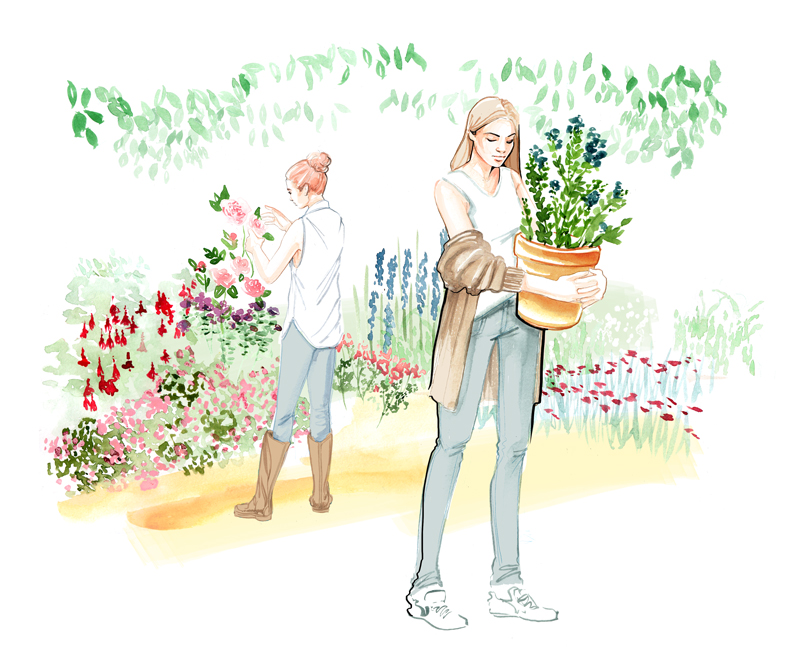 Gardens and flowers, a fashion and lifestyle illustration by Willa Gebbie