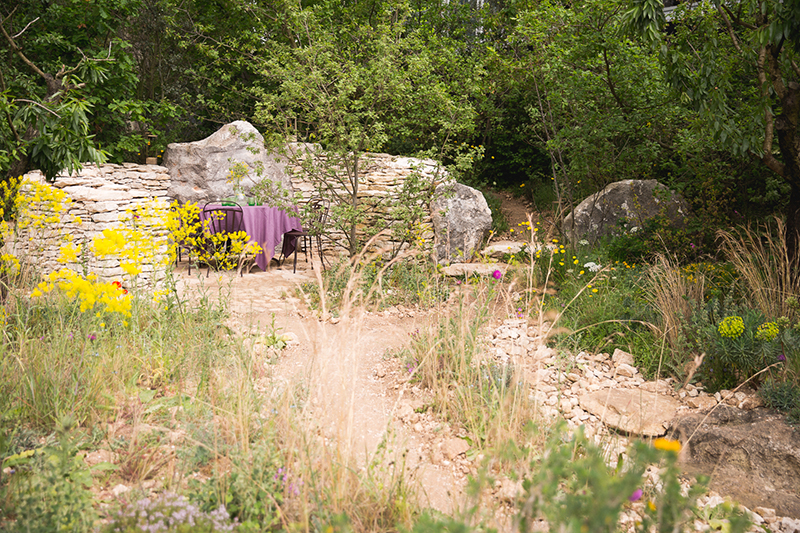 L'Occitane garden at the Chelsea Flower Show 2016