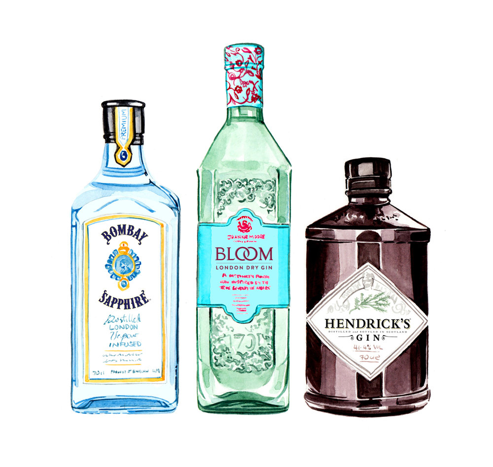 Willa Gebbie watercolour food and drink illustration; gin bottles for Waitrose magazine