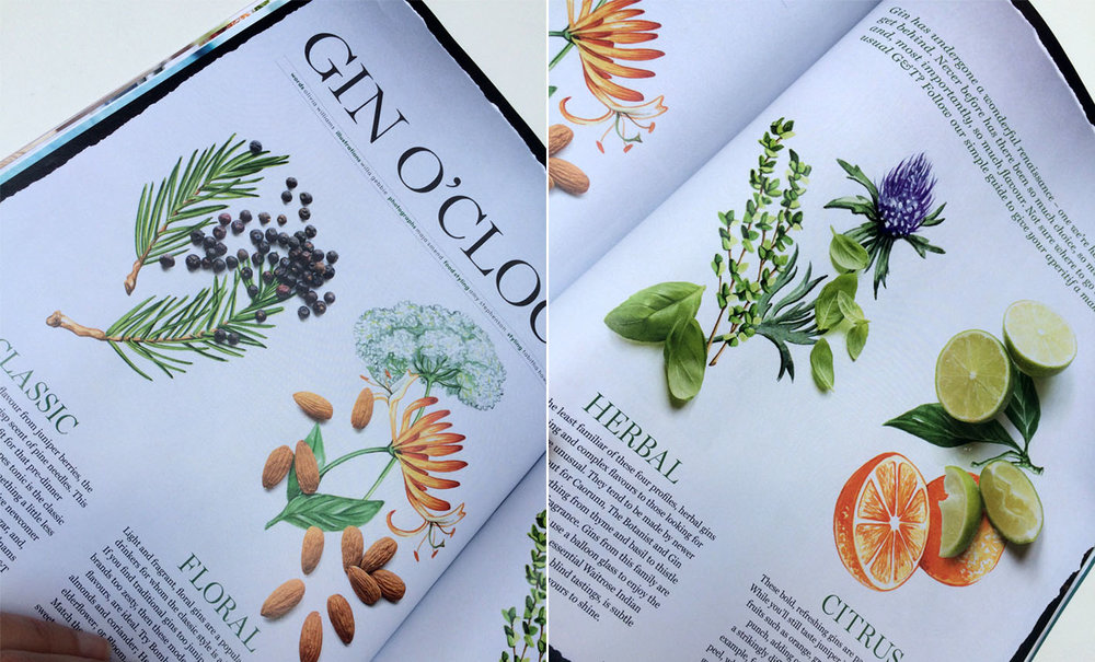 Food Illustrations commissioned by Waitrose magazine