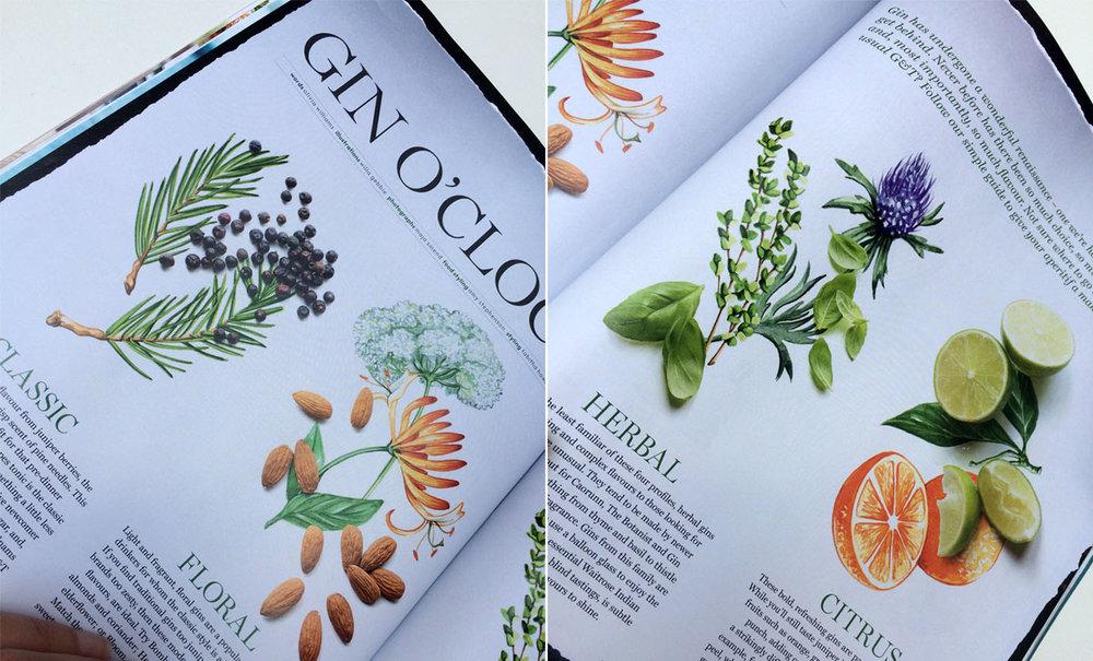 Food Illustrations commissioned by Waitrose magazine