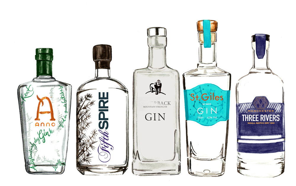 Watercolour gin bottles, food and drink illustration by Willa Gebbie