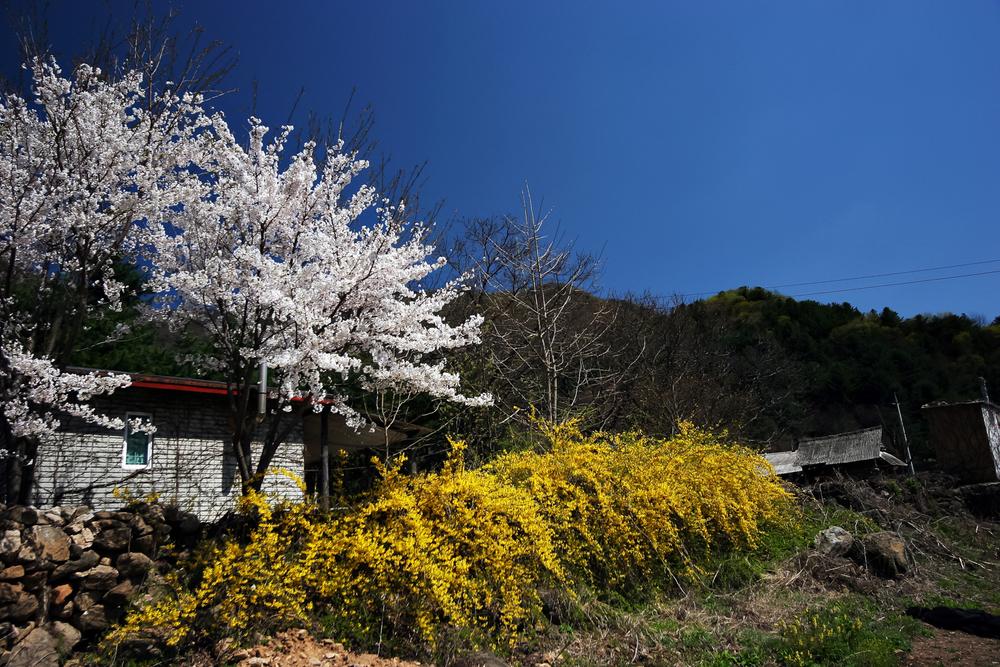 www.JuneKorea.com - 055135.jpg