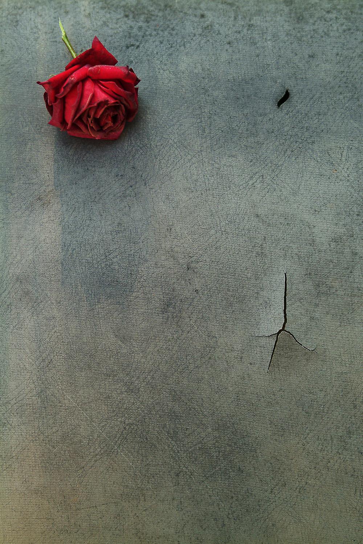www.JuneKorea.com - 030595.jpg