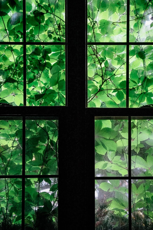 www.JuneKorea.com - 077765.jpg