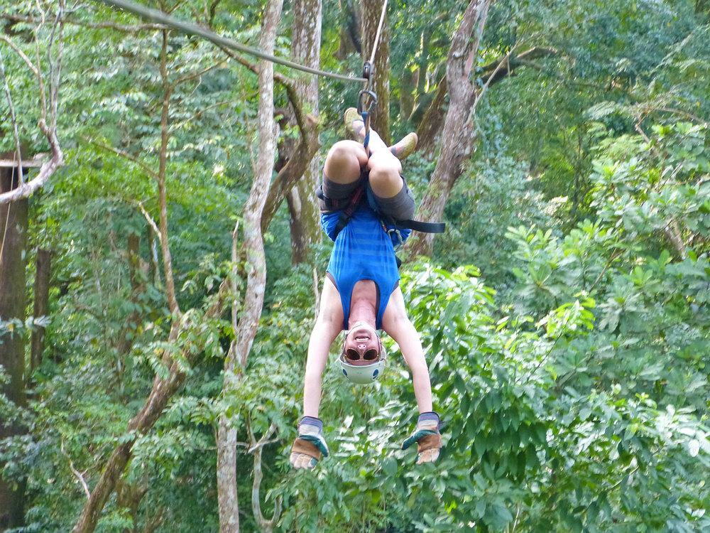 upside-down-canopy-zip-line-cr.jpg