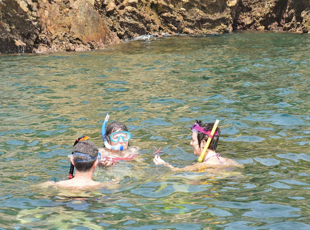 snorkeling-tour-tortuga-island.jpg