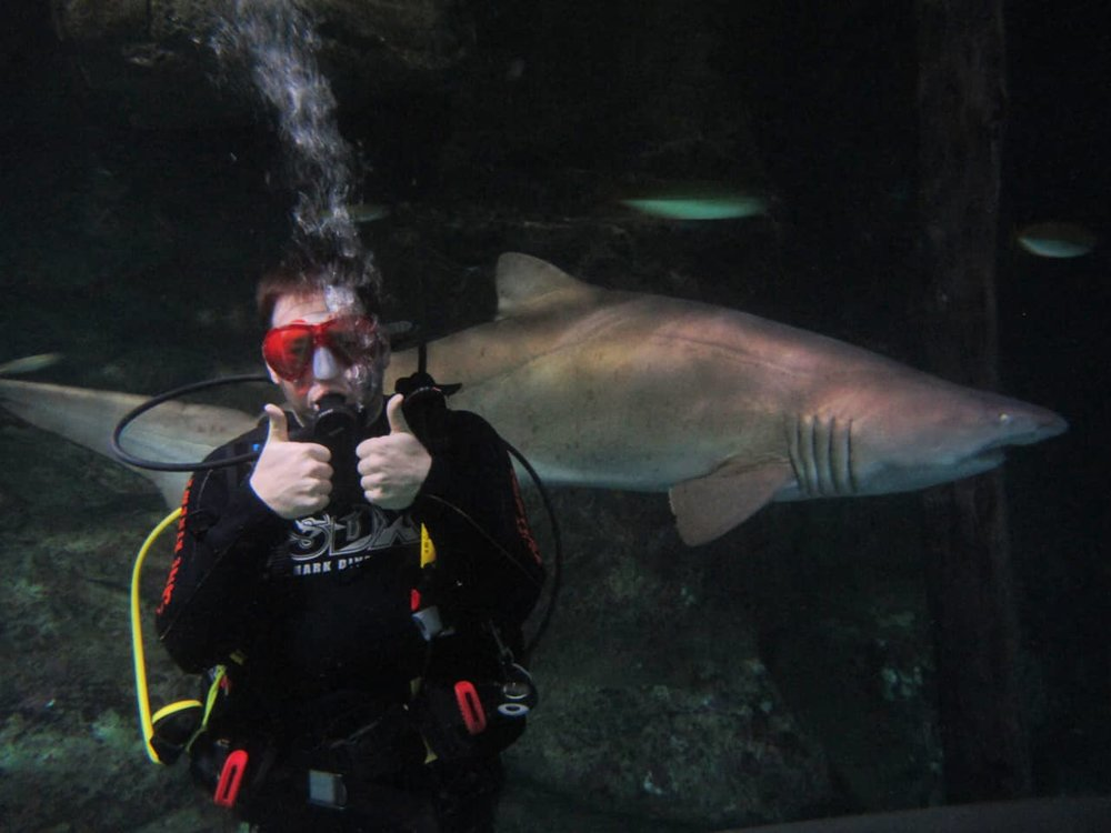 Attorney Lance Cawthon swimming with a shark