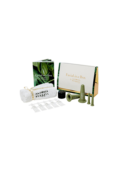 Home Facial Kit
