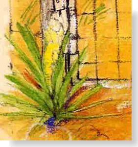 tumbplant1.jpg