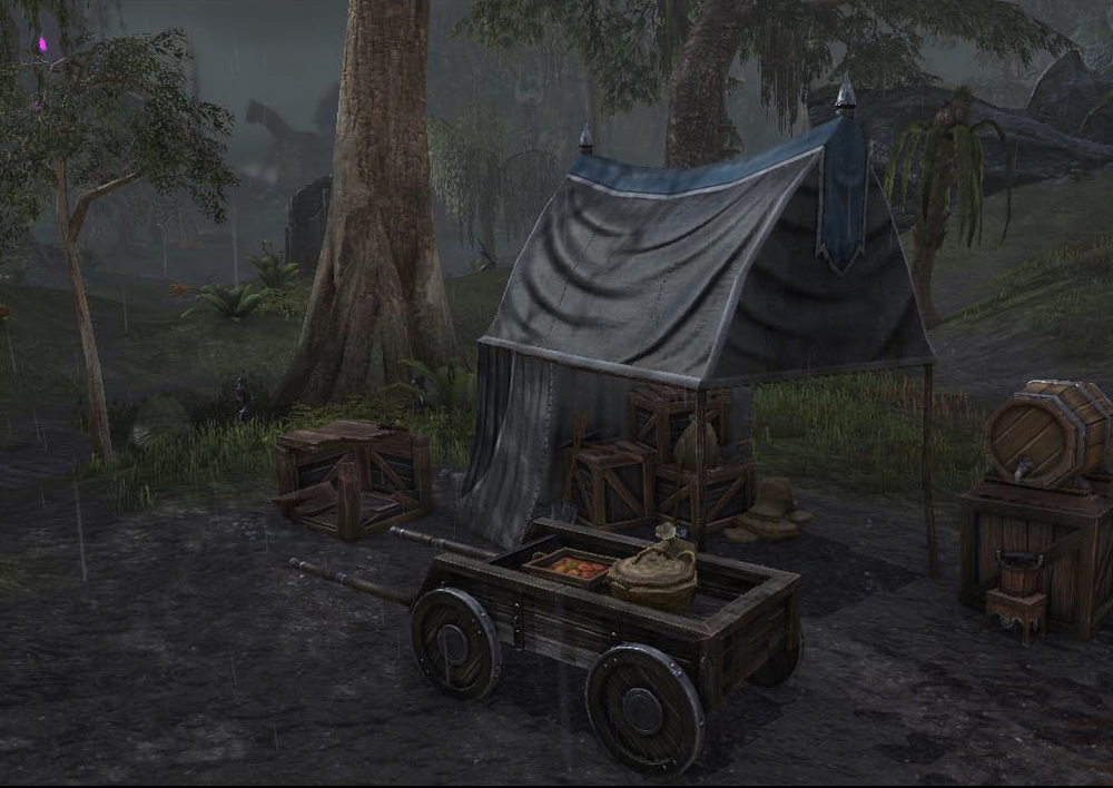 The_Elder_Scrolls_Online_23.jpg