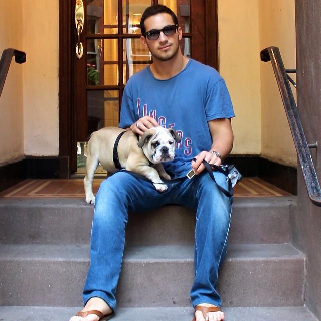 L ook its Hemingway!     #puppy #bulldog #ny