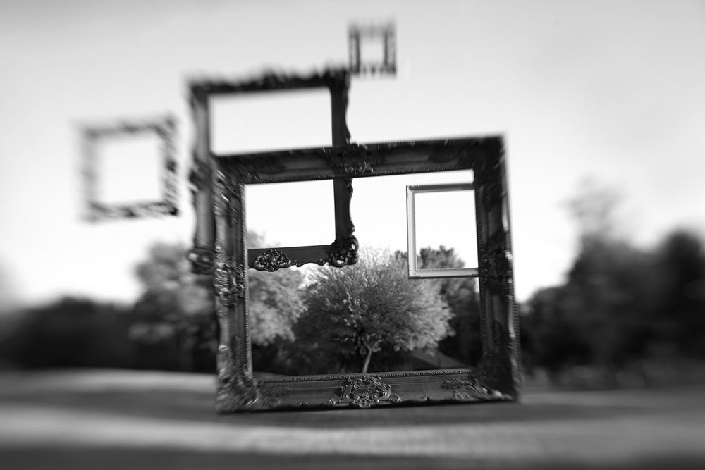 frames835.jpg