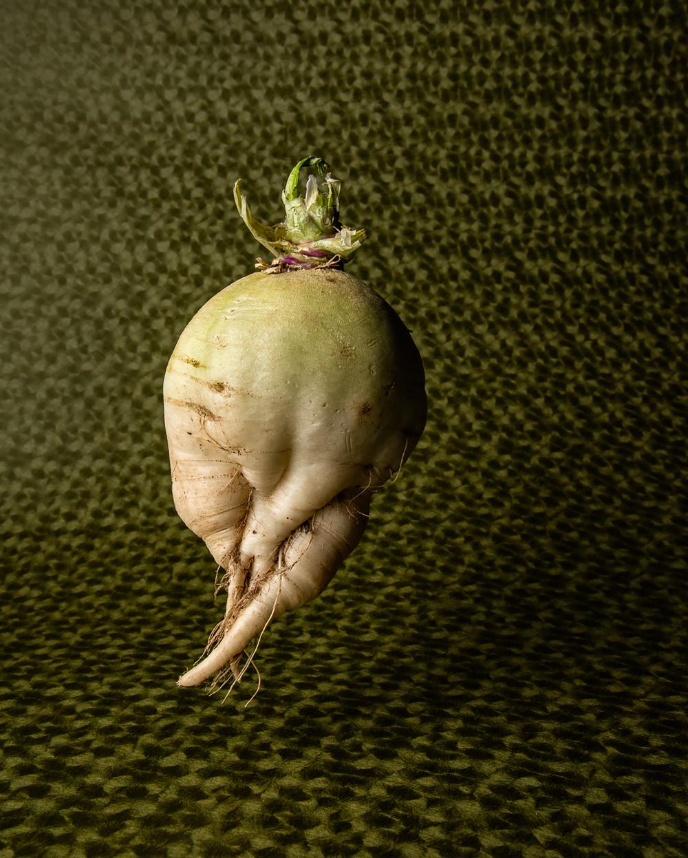 Meckler-ugly veggie-05.jpg