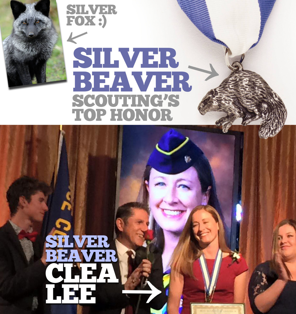The Silver Beaver Award was introduced in 1931 and is a council‐level distinguished service award of the Boy Scouts of America.  Recipients of this award are registered Scouters who have made an impact on the lives of youth through service given to the council.